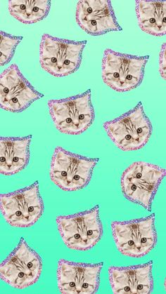 Glitter Kittens - Wallpaper