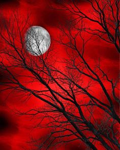 Tree Moon Red Bedroom Wall Art Home Decor Matted Picture #Handmade #Modernism