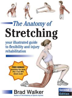 Penguin Random House Anatomy Of Stretching, 2Nd Ed. By Brad Walker