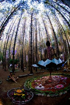 Electric Forest- Hopefully I will be attending this year