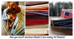 American Blanket is now making Pet Blankets for your favorite four-legged friend!