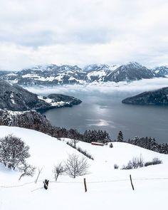 Auch im Winter gibt es so viele schöne Ausflugsziele in der Schweiz! 🇨🇭 Welches ist euer liebster Ort an kalten Tagen (das Sofa ausgeschlossen 😉) ? Ich kann mich gar nicht entscheide... Die Gegend um Luzern, das Berner Oberland, Graubünden, der Alpstein... Ja, wer die Wahl hat, hat die Qual! 🙃 Dieses Foto entstand vor kurzem auf dem Weg auf die @rigi.ch. ❄️ Und auch wenn das Wetter nicht ganz so mitspielte, war es trotzdem traumhaft schön! 😍 #rigi #citylakemountainmeet #... Switzerland, Kanton, Beautiful Pictures, Around The Worlds, Winter, Mountains, Nature, Travel, Outdoor