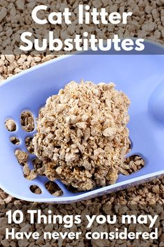 Cat Litter Substitutes - 10 Things You May Have Never Considered - Litter-Boxes. Cat Litter Cabinet, Paper Cat Litter, Hiding Cat Litter Box, Diy Litter Box, Best Litter Box, Natural Cat Litter, Cat Liter, Cat Care Tips, Animaux