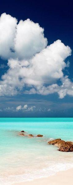 Pelican Beach - Belize   La Beℓℓe ℳystère