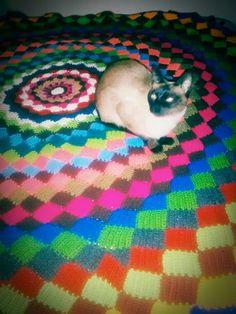 Manta circular tejida punto #tunesino #crochet