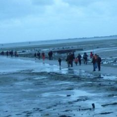 Passage du gois à Noirmoutiers  during low tide