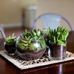 Tout petit et tout mignon, idéal pour vos tables basses ! un brin de verdure est toujours le bienvenue !  DIY Terrarium