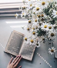 Find images and videos about photography, white and flowers on We Heart It - the app to get lost in what you love. Book Aesthetic, Flower Aesthetic, White Aesthetic, Aesthetic Photo, Aesthetic Pictures, Book Photography, Creative Photography, Spring Photography, Beautiful Flowers