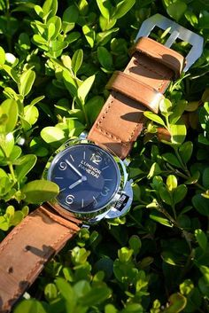 panerai #watch #watches #mens