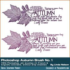 Free Photoshop Brush .abr Autumn or Fall Colors, for stamping or texture for your digital art project