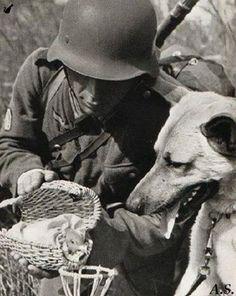 Soldat und seine besten Freunde.