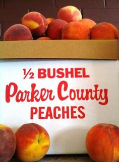 Parker County Peach Festival in Weatherford, Texas. This festival ...