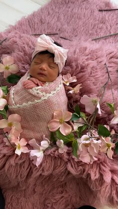 Newborn baby girl pictures photography session behind the scenes studio Newborn Baby Dolls, Newborn Baby Photos, Newborn Pictures, Houston Newborn Photographer, Cute Baby Videos, Baby Girl Pictures, Funny Babies, Cute Babies, Newborn Baby Photography