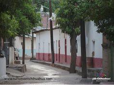 TURISMO EN CHIHUAHUA Escondido entre las Barrancas del Cobre se encuentra un hermoso lugar llamado Batopilas, famoso por su pasado minero. En la actualidad, este lugar es un destino turístico en desarrollo, mayormente en el turismo ecológico y de aventura. Es famoso entre turistas estadounidenses y europeos que aprecian la riqueza colonial de su pasado. Cuenta con 15 hoteles de todas las categorías. No deje de conocerlo en su próximo viaje a  Chihuahua #turismoenchihuahua Batopilas