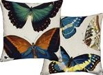 Butterfly Accent Pillows: BurkeDecor.Com