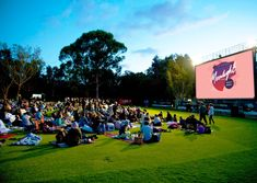 Moonlight Cinema in Kings Park! For more information visit https://www.moonlight.com.au/perth/