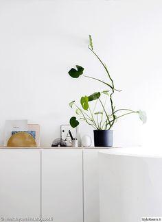 valkoinen,skandinaavinen,kasvit,viherkasvi,sisutus,senkki,diy,eteinen,keittiö,kylpyhuone,lastenhuone,makuuhuone,olohuone,työhuone,Tee itse / DIY