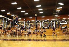 By: νσℓℓєувαℓℓ вєαυту ♡ (VolleyballBeaut) home away from home All Volleyball, Volleyball Drills, Volleyball Quotes, Volleyball Players, Softball, Sport Quotes, Basketball, Screen Wallpaper, Kendall