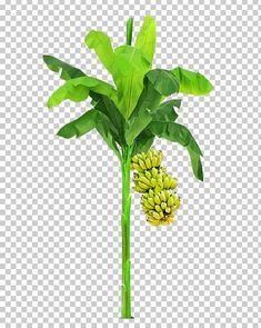 Pin By Arimuthu Ari On Ari Tree Photoshop Digital Flowers Flower Pots