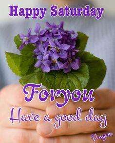 Good Morning Greeting Cards, Good Morning Greetings, Happy Saturday, Good Day, Bom Dia, Buen Dia, Good Morning, Hapy Day