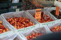 Rainier Cherries at Seattle's Pike Place market