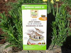 !00th Monkey Mushroom garden kit with tulips