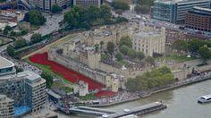 London - poppies