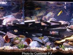 Wall Decoration Aquascape Kit. Aquarium Aquascape DIY Kit, Aquarium ...
