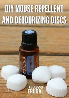 diy-mouse-repellent-discs