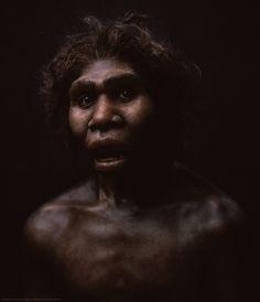 Reconstruction of Homo ergaster by Élisabeth Daynès