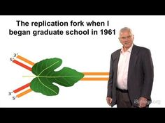 63 best genetics structure of dna replication images on alberts has spent nearly 30 years trying to understand how dna is replicated when he began his graduate work in very little was known about how dn fandeluxe Images