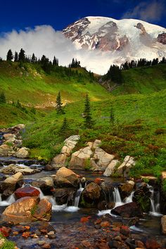 Edith Creek and Mt Rainier Mt Rainier National Park Washington. Washington State is very close to the top of my list of places to visit! Foto Nature, All Nature, Places To Travel, Places To See, Beautiful World, Beautiful Places, Amazing Places, Mt Rainier National Park, Parc National