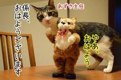 こんなときもあるさ~ - http://iyaiyahajimeru.jp/cat/archives/61474