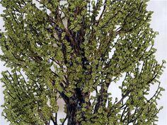 Populus nigra или Тополь чёрный(высота-101см)   biser.info - всё о бисере и бисерном творчестве