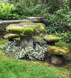 bit of whimsy in a seaside garden.moss covered stone toadstools and table. A bit of whimsy in a seaside garden.moss covered stone toadstools and table. Magic Garden, Forest Garden, Woodland Garden, Dream Garden, Rockery Garden, Garden Planters, Garden Landscaping, Garden Seats, Succulent Planters