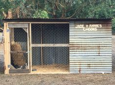Home made chicken coop from recycled wood and tin we found lying around the farm. Built this for our nieces 3rd birthday present.