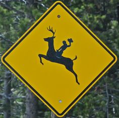This is a legitimate highway sign near Moose, Wyoming   Photograph by Jeep Brown