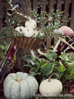 Fall Vintage Bicycle - Hymns and Verses