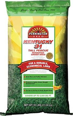 Pennington 100509303 Kentucky 31Inch Tall Fescue Seed 25Pound * Check this awesome product by going to the link at the image.
