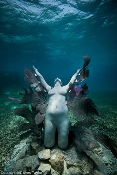 "Latest works Jason de Caires Taylor - as beautiful as they are I just keeping thinking, ""Way to mess with future archeologists!"""