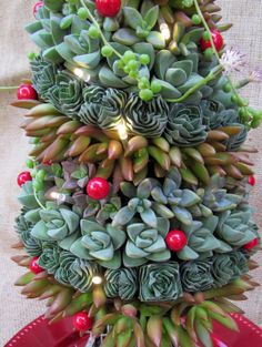 Christmas Succulent Decor.25 Best I M Dreaming Of A Succulent Christmas Images