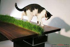 Эко-дизайн в интерьера, предметы мебели с натуральным зеленым газоном, стол с…