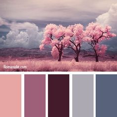 """Never really gave this much thought before but this IS a very good way of narrowing down to a finished color scheme """"BEFORE"""" you go & buy the paint. Very often we have something in a room or that we would like to put in a room that can help us to choose the colors for that room. In this case this picture set the overall mood & guide to the color scheme. A very good approach I think ;)"""