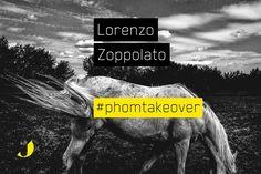 Nono takehover! Settembre, Lorenzo Zoppolato