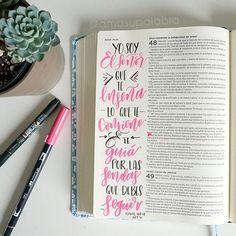 Hoy Dios te dice: Yo soy el SEÑOR tu Dios, que te enseña lo que te conviene y te guía por las sendas que debes seguir.✨ Bible Journaling en español