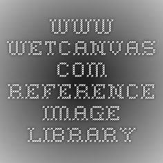 www.wetcanvas.com Reference Image Library