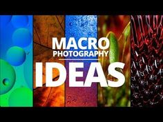 TOP 5 Macro Photography Ideas to try at home - Photography, Landscape photography, Photography tips Photography Ideas At Home, Photography Lessons, Macro Photography, Landscape Photography, Cool Photos, Beautiful Pictures, Favorite Subject, Soap Bubbles, Amazing