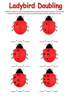 Doubling activity with Ladybirds Maths Eyfs, Numeracy Activities, Counting Activities, Number Activities, Outdoor Activities, Year 1 Maths, Early Years Maths, What The Ladybird Heard Activities, Doubling And Halving