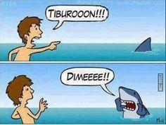 Tiburón!