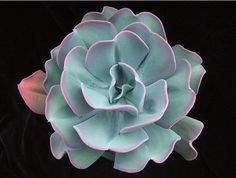 20 Big Butterfly Echeveria Gigantea Seeds | Blue Pink Exotic Rare Sedum Succulent Cactus Cacti Gardening Decor DIY Home Plant Interesting Echeveria are very popular succulents that grow in attractive rosettes with beautiful leaves in a variety of colors and sometimes stunning flowers. These plants have been extensively hybridized, so in addition to the main species there are many varieties that have been specially bred for interesting leaf form and color. Most Echeveria will remain fairly…